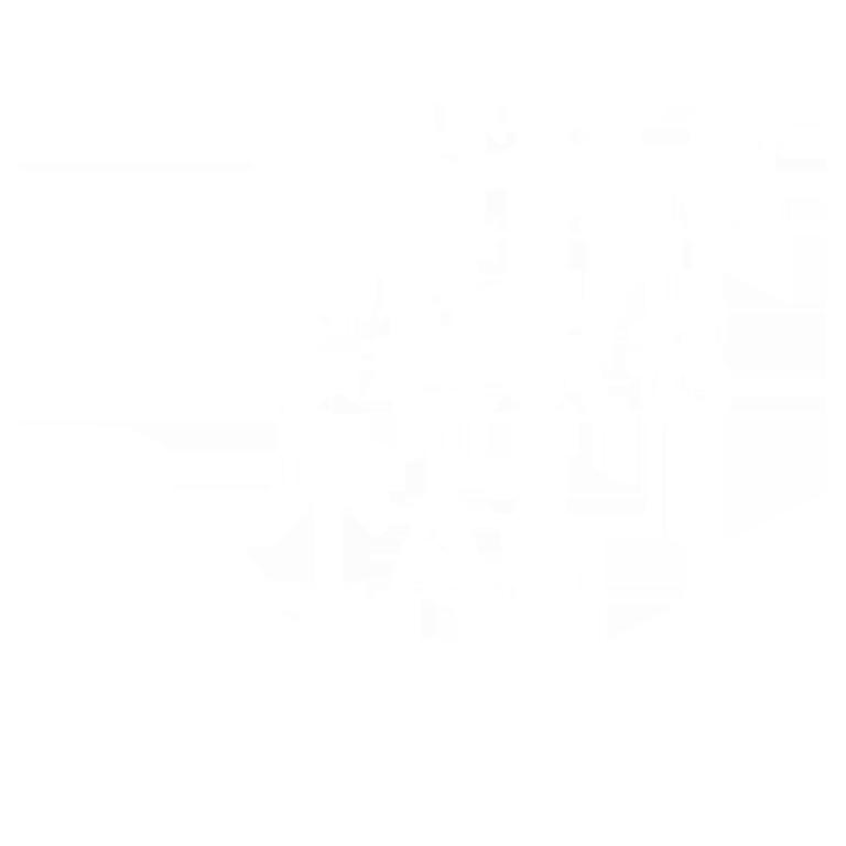 Chrischona Schinznach Logo