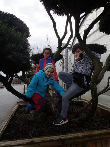 Fotochallange Kinder auf Baum